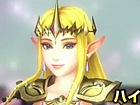 Hyrule Warriors - Zelda (The Wind Waker)