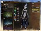 Imagen Guild Wars 2 (PC)