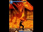 Foto Ninja Gaiden Dragon Sword