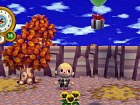 Foto Animal Crossing: City Folk