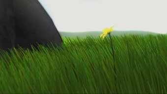 Video Flower, Trailer oficial