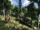 Imagen The Hunter (PC)
