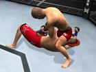Imagen UFC 2010 Undisputed