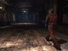 Silent Hill Downpour - Pantalla