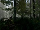 Imagen The Forest