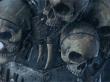 Tráiler Cinemático: Los Nosrca (Total War: Warhammer)