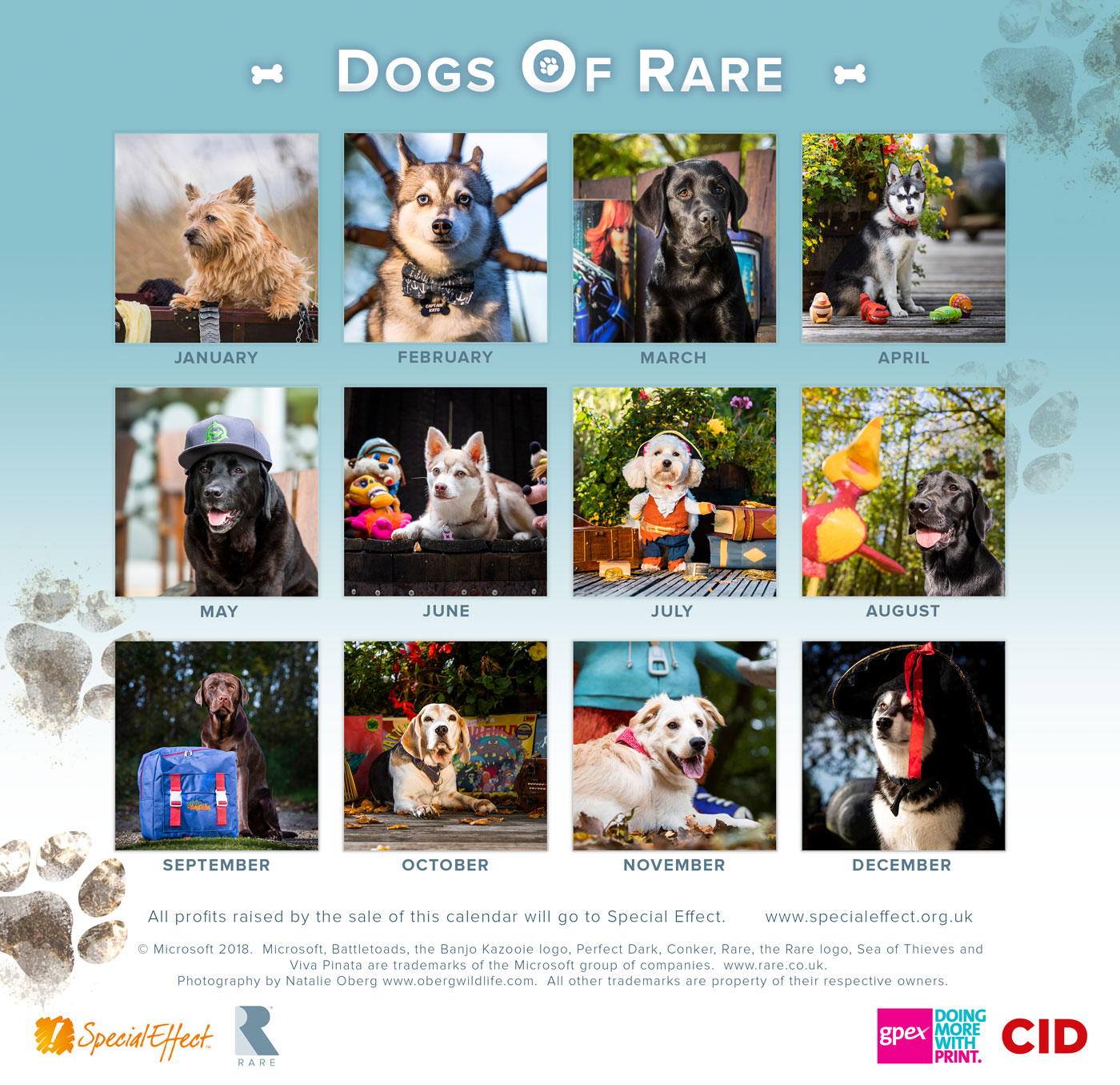 Dogs of Rare, el divertido calendario solidario de las mascotas de Rare