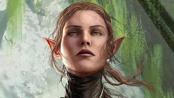 Divinity: Original Sin 2 desde mañana en Xbox Game Preview
