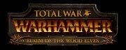 Warhammer: Elfos Silvanos