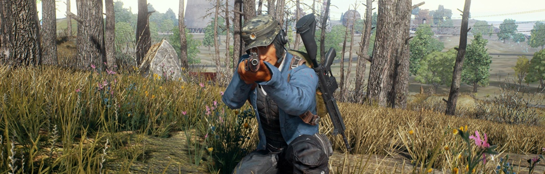 PlayerUnknown's Battlegrounds - ¿Por qué triunfa Battlegrounds?