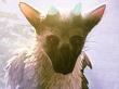 El tierno The Last Guardian tendrá pronto experiencia para PS VR