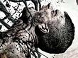 Tráiler con la fecha de lanzamiento de The Beast Inside, una aventura de terror