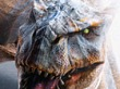 Un cineasta baraja hacer una película de Monster Hunter
