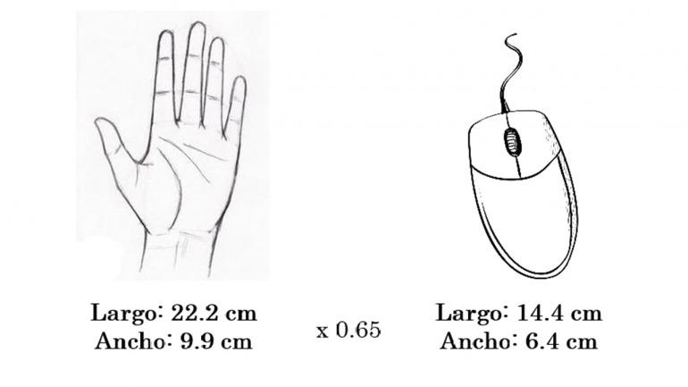 Usando mi propia mano como ejemplo, yo mismo debería optar por ratones del tamaño mostrado. Teniendo en cuenta que me gustan los ratones grandes.