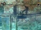 Imagen Wii La Torre de las Sombras