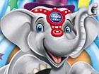 Vamos al Circo: Amigo de los Elefantes