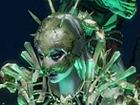 Forsaken Masters: Catarina, Master of the Dead